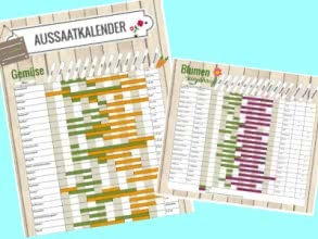 Gratis-Aussaatkalender von Gartenhaus