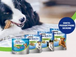 Hunde-Futterprobe Purina Dentalife gratis!