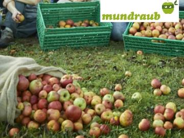 Kostenlose Früchte, Kräuter und Nüsse