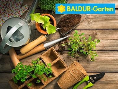 Blumenpracht: 30% Rabatt bei Baldur-Garten