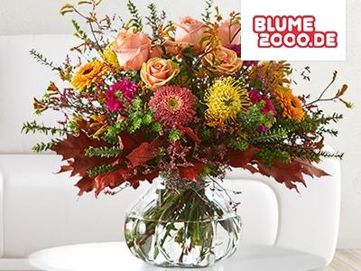 15% Rabatt bei Blume2000.de