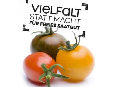 Gratis-Tomatensamen zum Anpflanzen bestellen