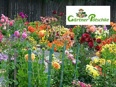 Ab in den Garten: 5€ Rabatt bei Gärtner Pötschke