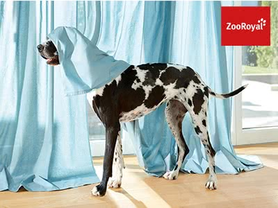 Wau-Rabatte bei ZooRoyal: bis zu 8€ sparen