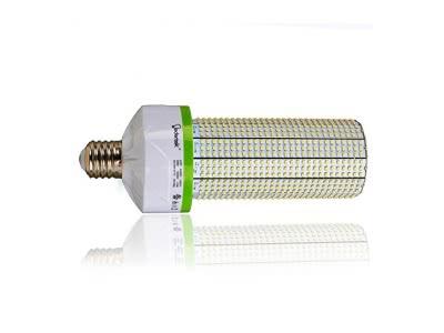 Led Light Bulbs