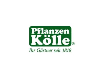 10%-Gutschein für Grünpflanzen bei Pflanzen-Kölle