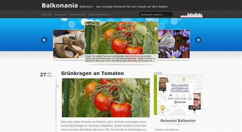 Hinter den Kulissen von…Balkonania.de – ein Kurzinterview