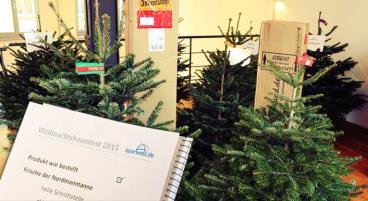 Sparwelt.de Weihnachtsbaum-Test 2015